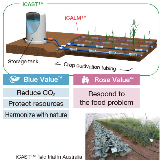 Field Trials of the Crop Cultivation System iCAST™